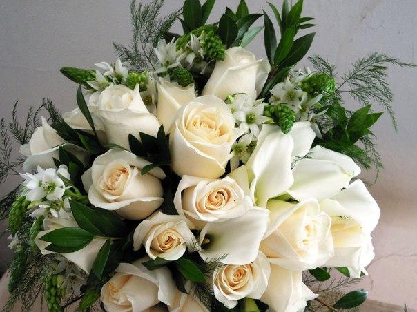Нежный розы на день рождения