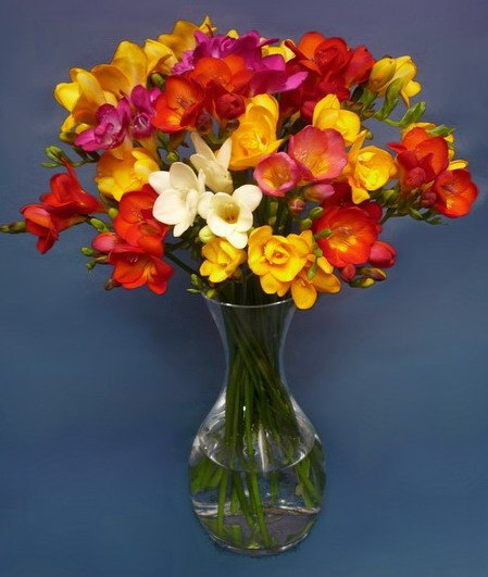 Яркие цветы к празднику