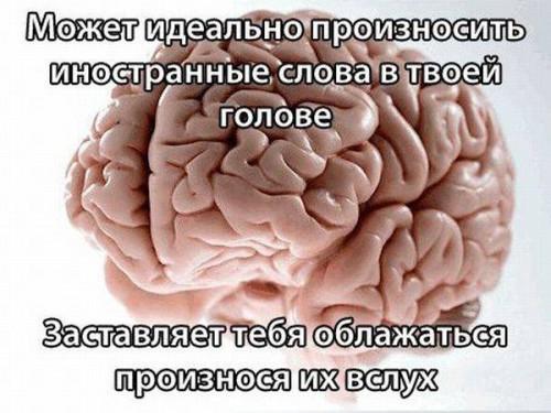 Проделки нашего мозга