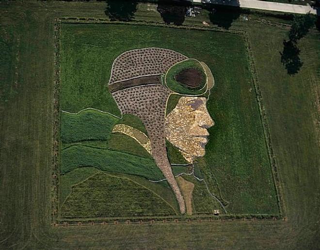 Найбільші картини в світі, намальовані на полях