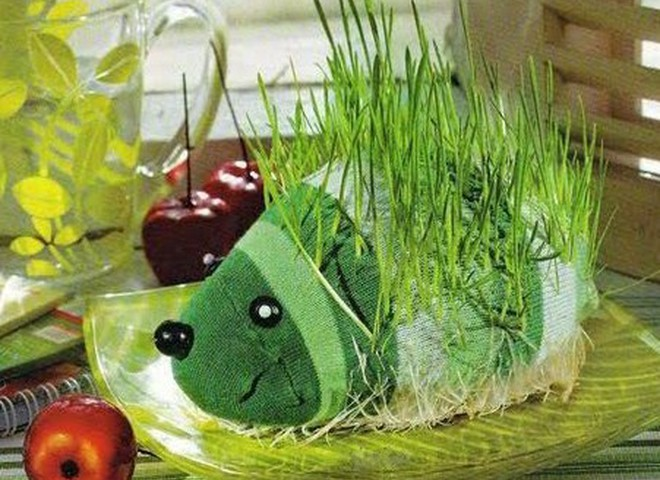 Укрась кухню зеленым чудиком