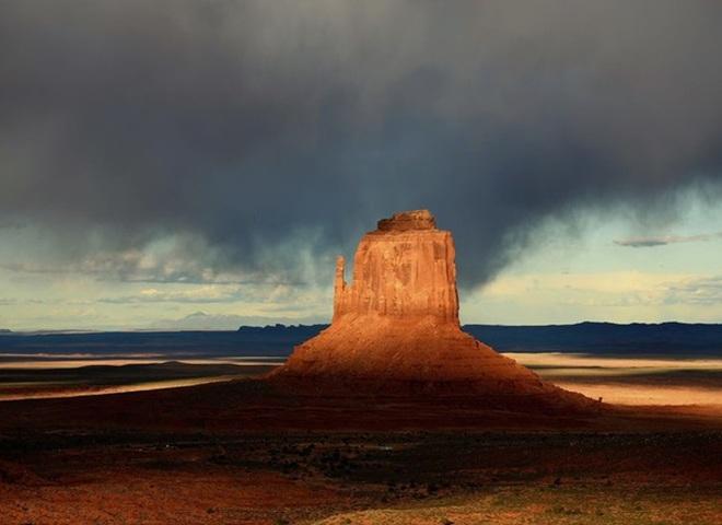 National Geographic опублікував знімки природи для конкурсу The Nature Photographer of The Year
