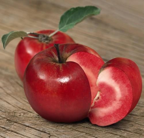 Новый сорт яблок ОМГ