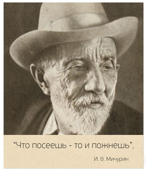 Известные цитаты, которые они не говорили