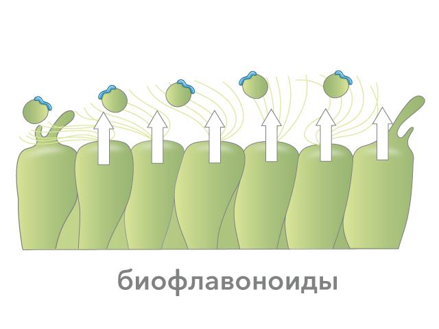 Таблетки проти крапель в ніс при лікуванні нежиті