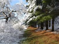 Встреча зимы и осени