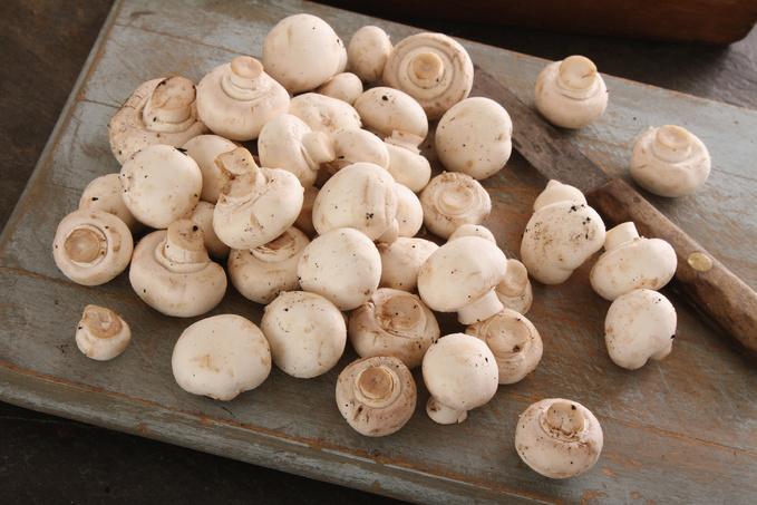 Маринад для грибов: ТОП-5 рецептов