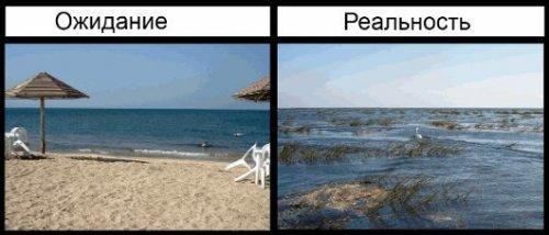 Лето. Море. Отпуск. Ожидание и реальность