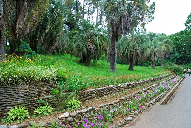 Достопримечательности Батуми: Батумский ботанический сад