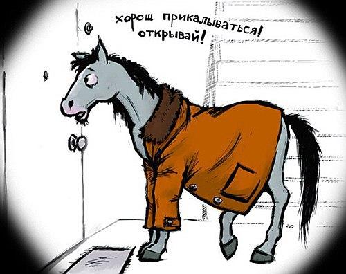 Конь в пальто на 1 апреля