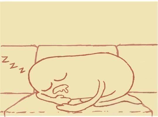 Прикольный комикс про сон с котэ