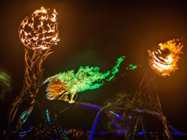 Burning Man, США
