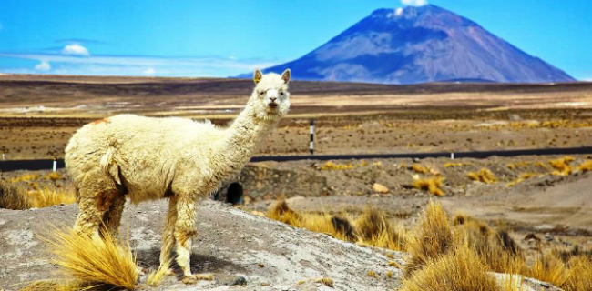 17 самых диких и красивых мест в мире по версии National Geographic