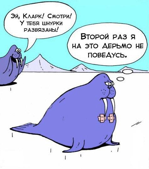 Грустный комикс про моржей