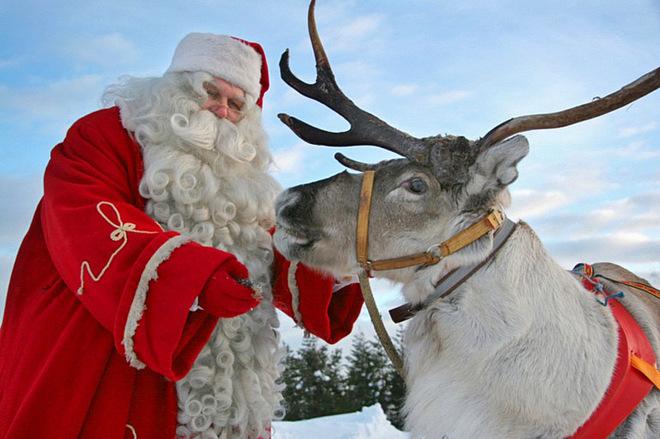 Деды Морозы