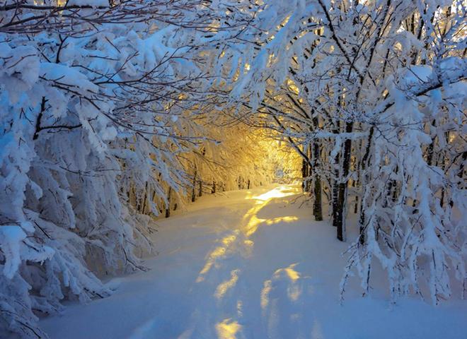 Места, где зима бесподобно прекрасна