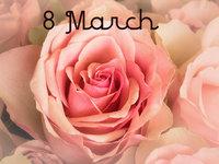 Нежные розы к 8 Марта