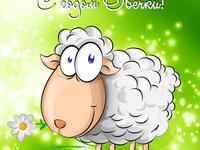 С годом овечки 2015