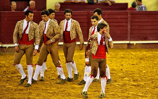 Коррида в Португалии
