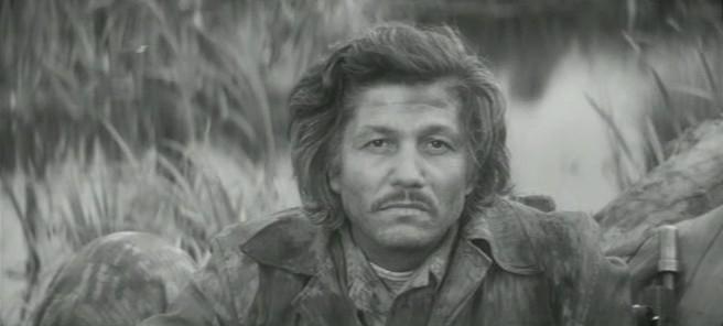 Міхай Волонтір