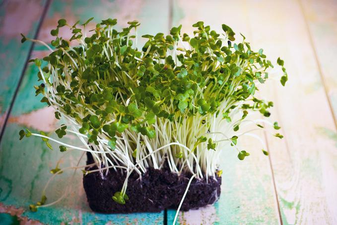 Детокс по-весняному: топ-10 продуктів для очищення організму