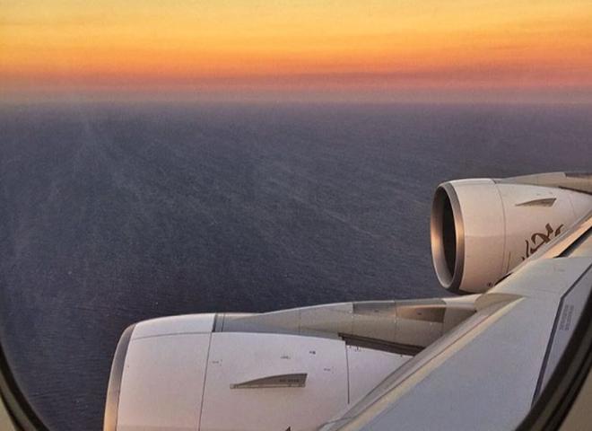 Слишком длинные ноги и свинья на борту: самые странные причины снятия пассажиров с авиарейсов