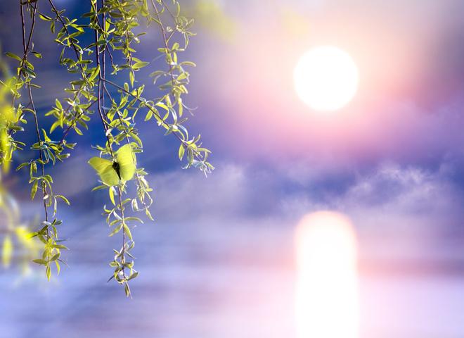 Що можна і не можна робити в день Кирилов день, хто відзначає День ангела 31 березня