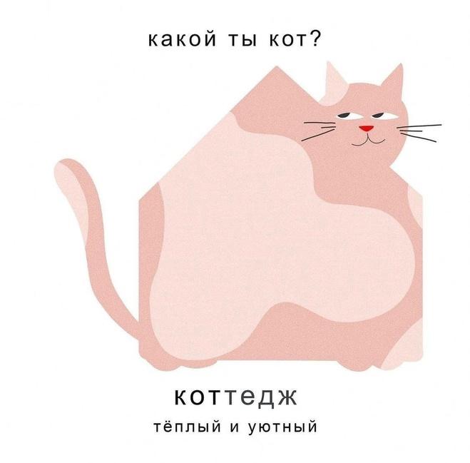 Какой ты кот?
