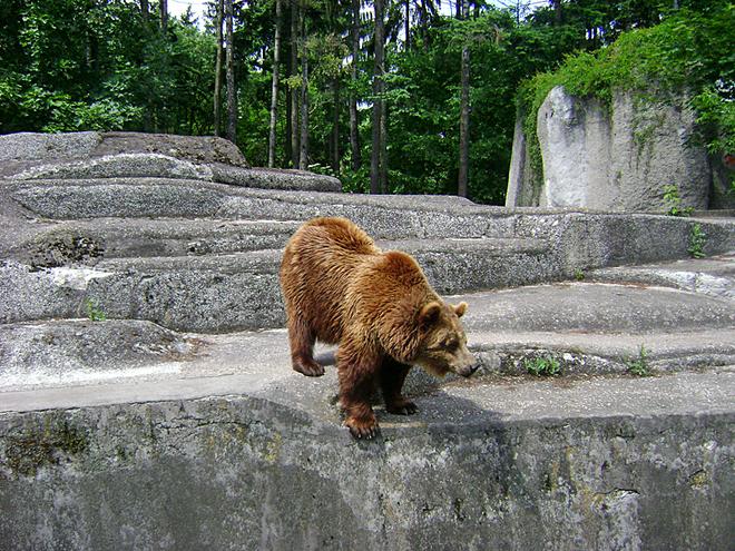 Зоопарк Варшави