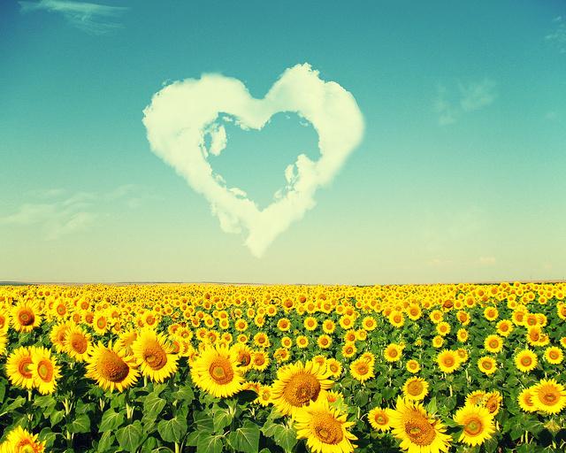Украина с любовью