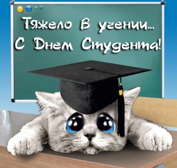 Няшная открытка для студента