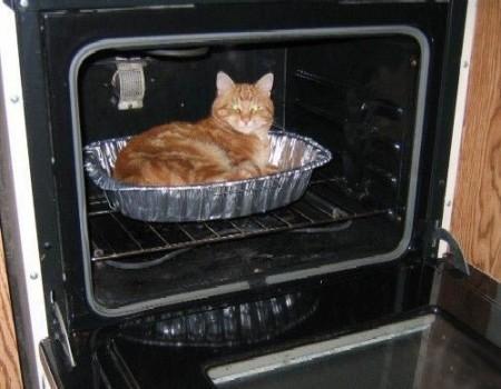 Ужинать будешь?