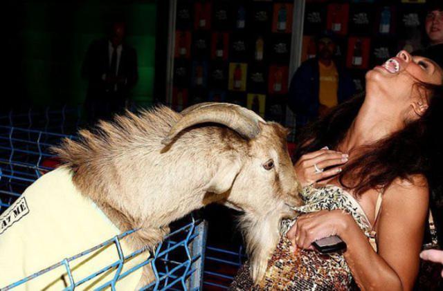 Приколы про девушек и животных