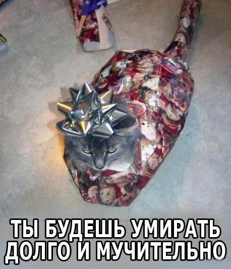 Подарок будет мстить