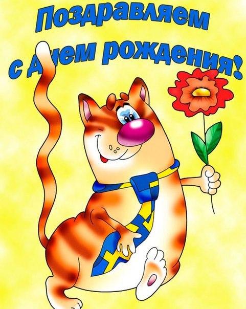Прикольная открытка от котика