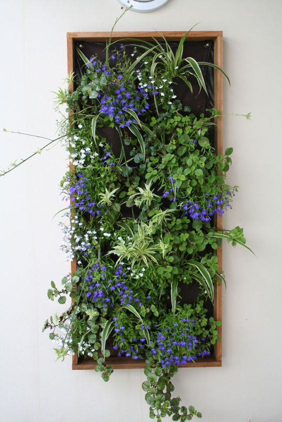 Вертикальні сади