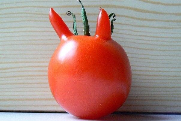 Позитив. Ожившие овощи