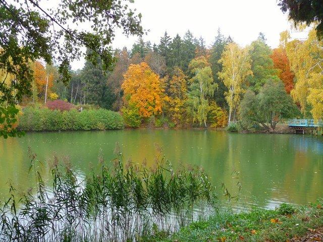 Осінь в Україні: найгарніші дендропарки нашої країни