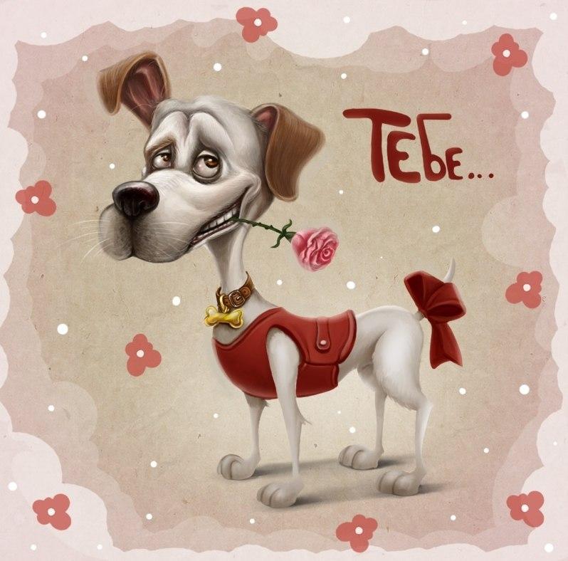 С днем рождения собаки открытки