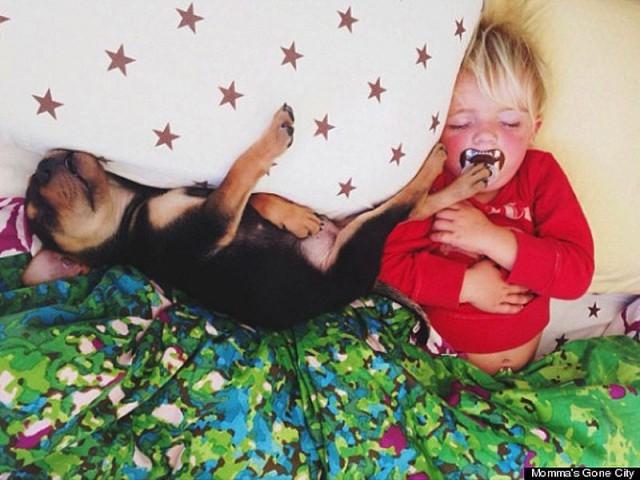Тео и Бо – самые мимимишные сони