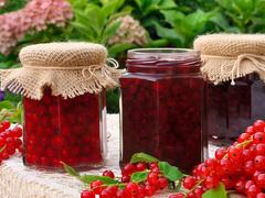 Рецепты из красной смородины