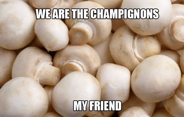We are the champignons..