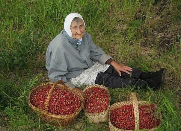 Бабушка насобирала вкусняшек