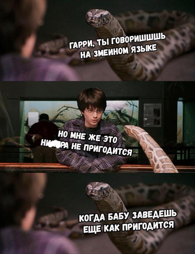 Змеиный язык и будущее
