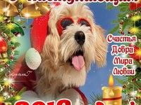 С наступающим Новым годом Собаки 2018!