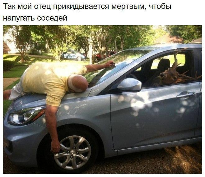 Типичное поведение взрослого мужчины