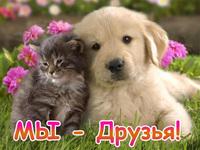 Мы - друзья!