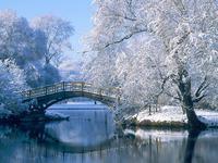 Мост в зимнем парке