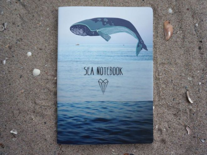 Seanotebooks