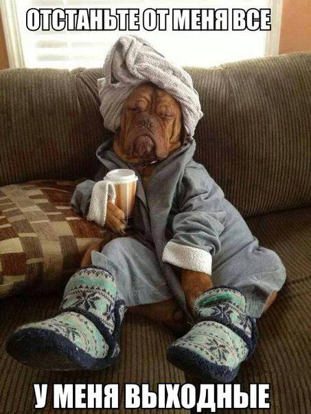 Не хочу сегодня работать... у меня ВЫХОДНОЙ!